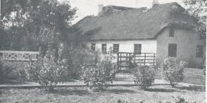 Nygaard 1982